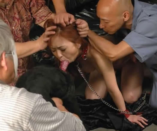 Asian Dogsex